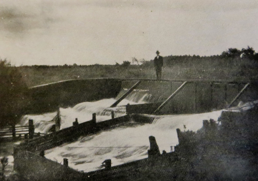 The trout leap at Jedsted Mill in the early 1900s