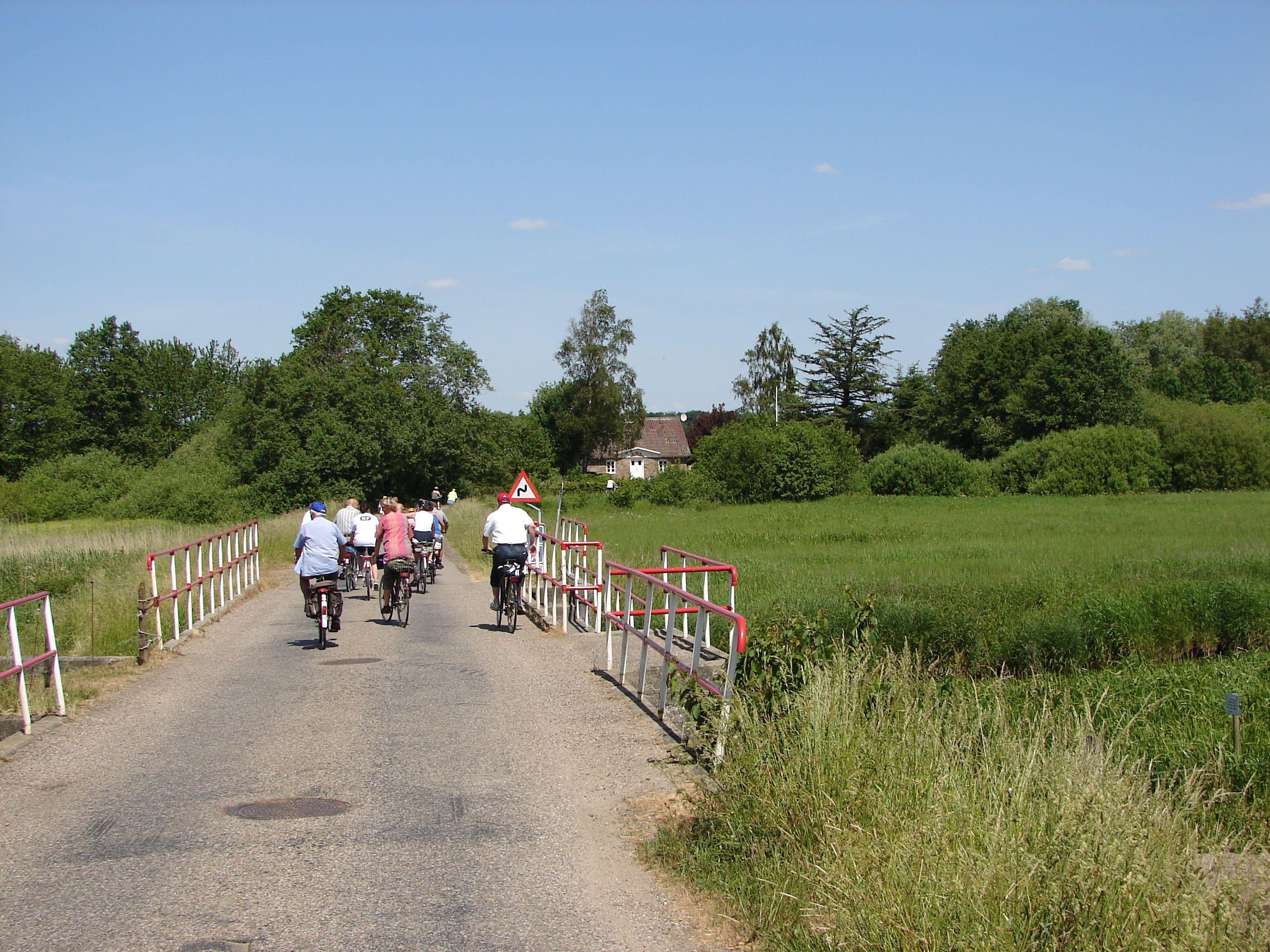 Cyklister på Frihedsbroen