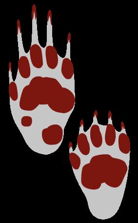 Grævlingens fodspor er bredere end hundespor og har tydeligt aftryk af de lange kløer. Forpoten (øverst) afsætter et spor, der er ca. 4 cm bredt og 4-7 cm langt. Bagpotens (nederst) spor er ca. 3,5 cm bredt og 6,5 cm langt.